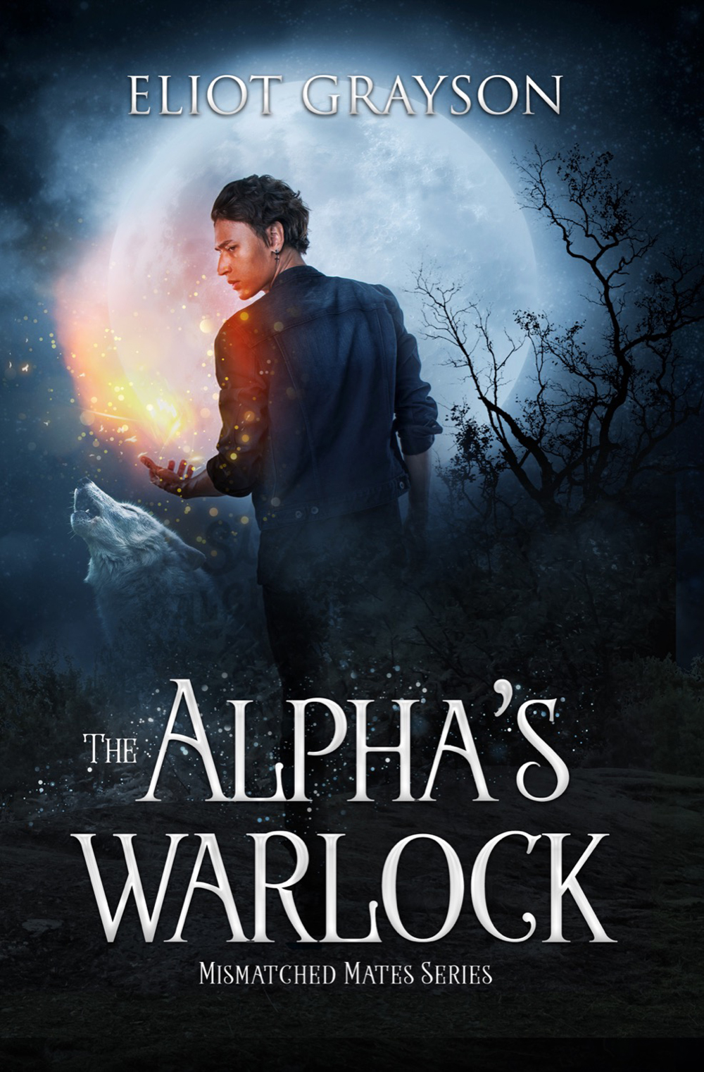 The Alpha's Warlock: Paranormal Cover